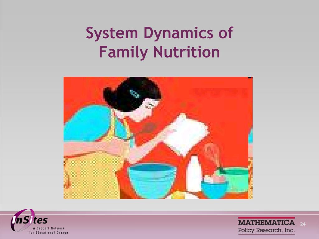 System Dynamics of