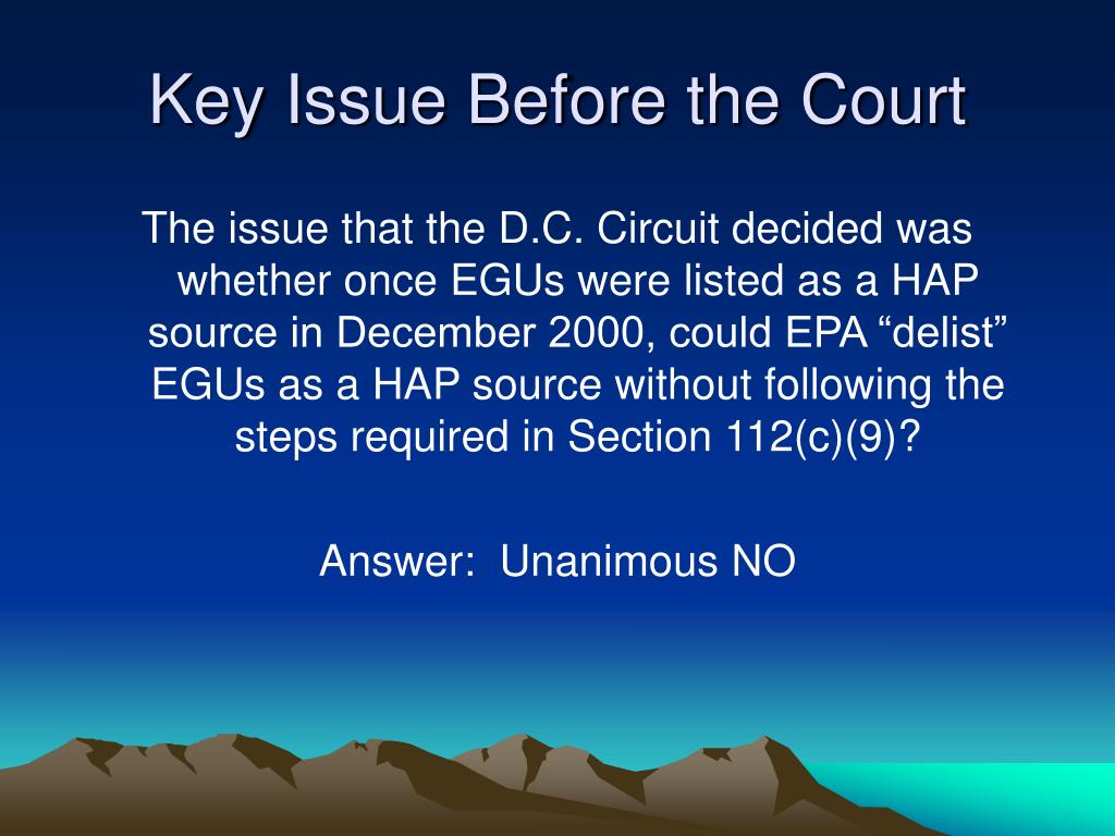Key Issue Before the Court
