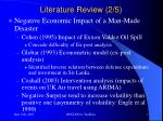 literature review 2 5
