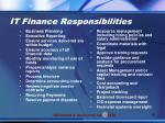 it finance responsibilities