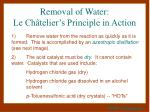 removal of water le ch telier s principle in action