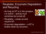 reuptake enzymatic degradation and recycling