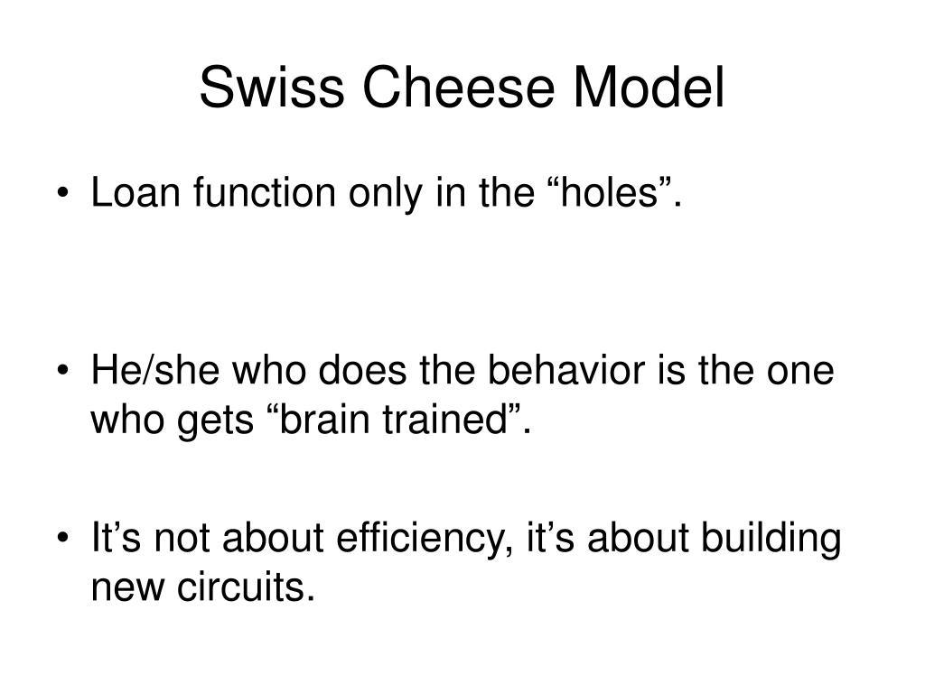 Swiss Cheese Model