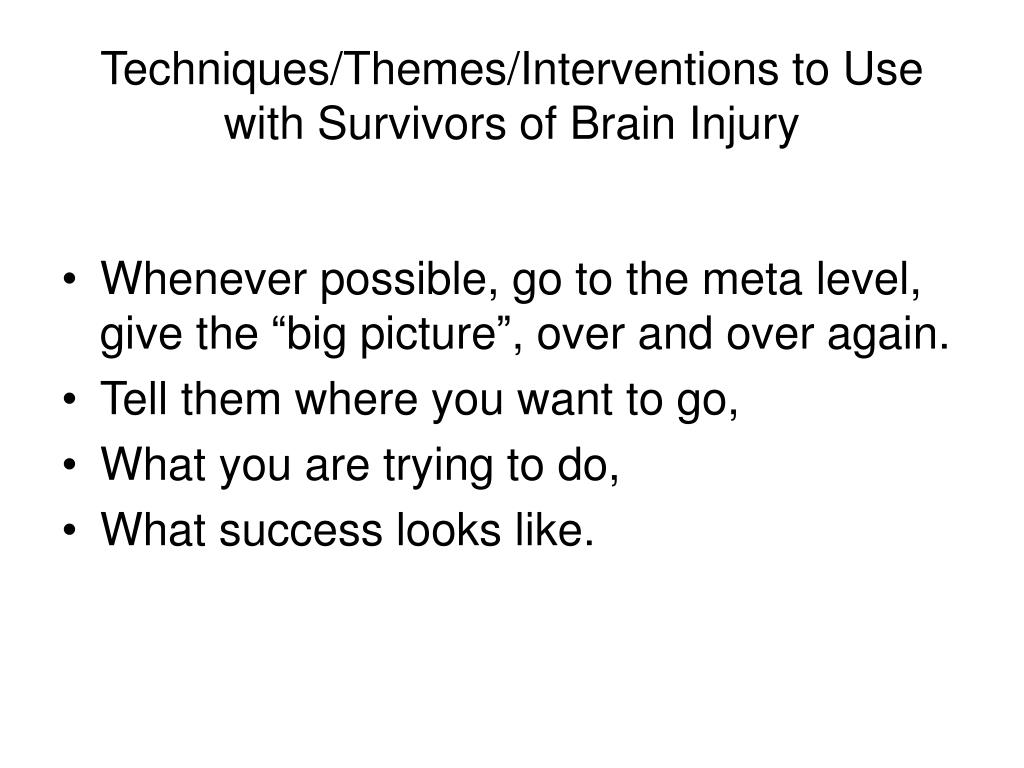 Techniques/Themes/Interventions to Use with Survivors of Brain Injury