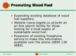 promoting wood fuel
