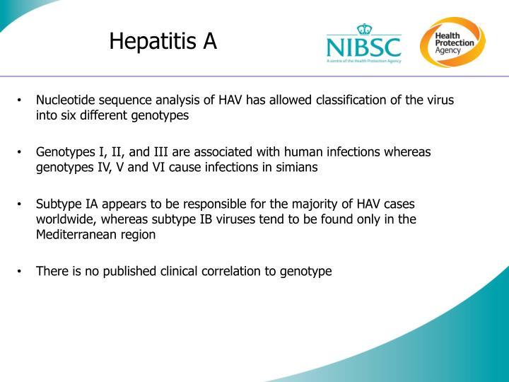 Hepatitis a3