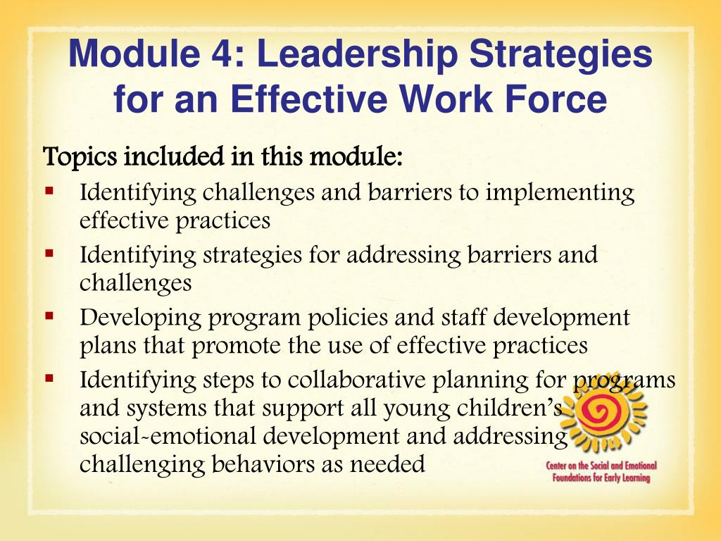 Module 4: Leadership Strategies for an Effective Work Force