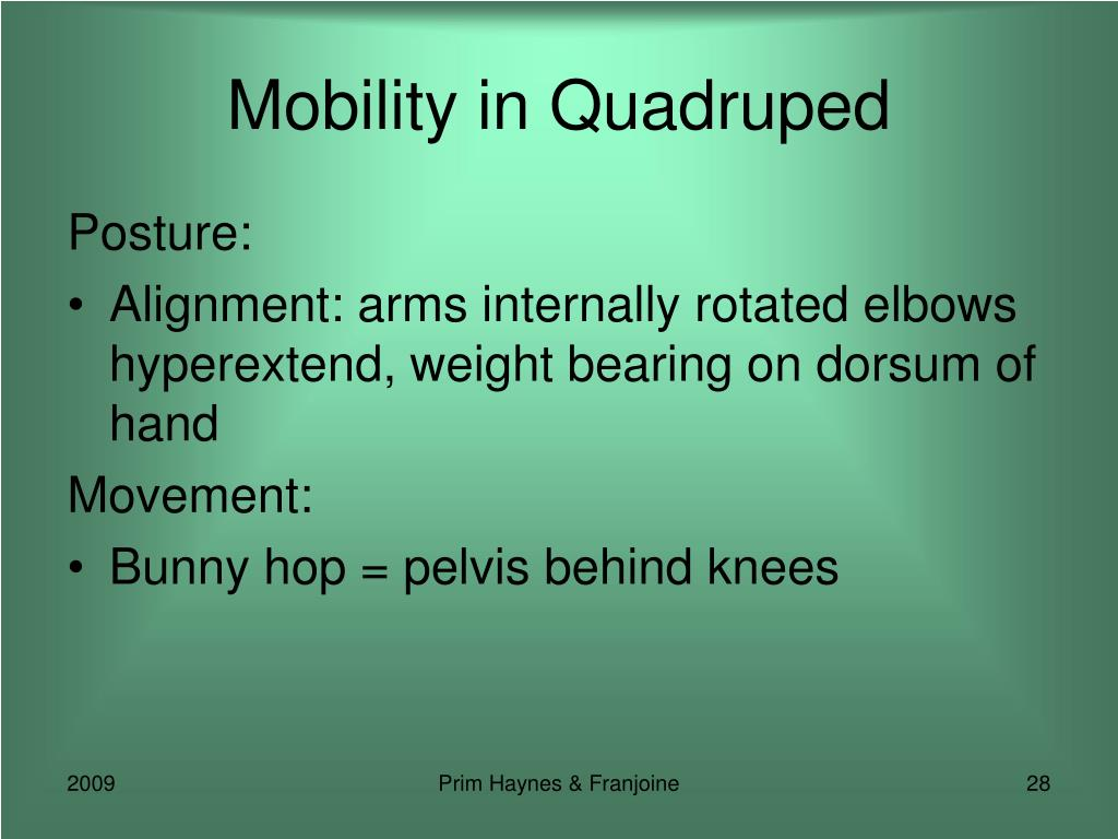 Mobility in Quadruped