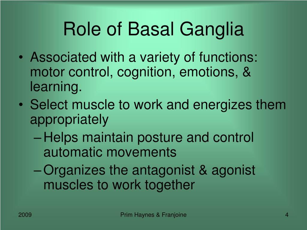 Role of Basal Ganglia