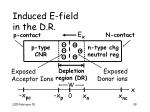 induced e field in the d r39