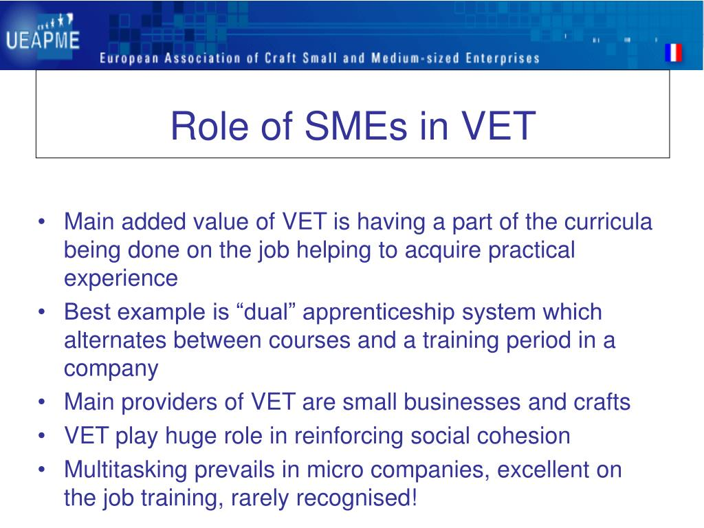 Role of SMEs in VET