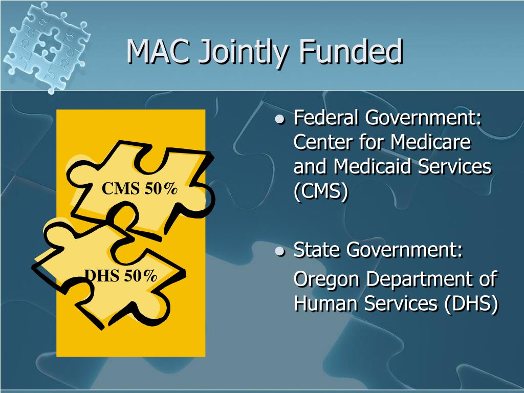Federal Government: Center for Medicare and Medicaid Services (CMS)