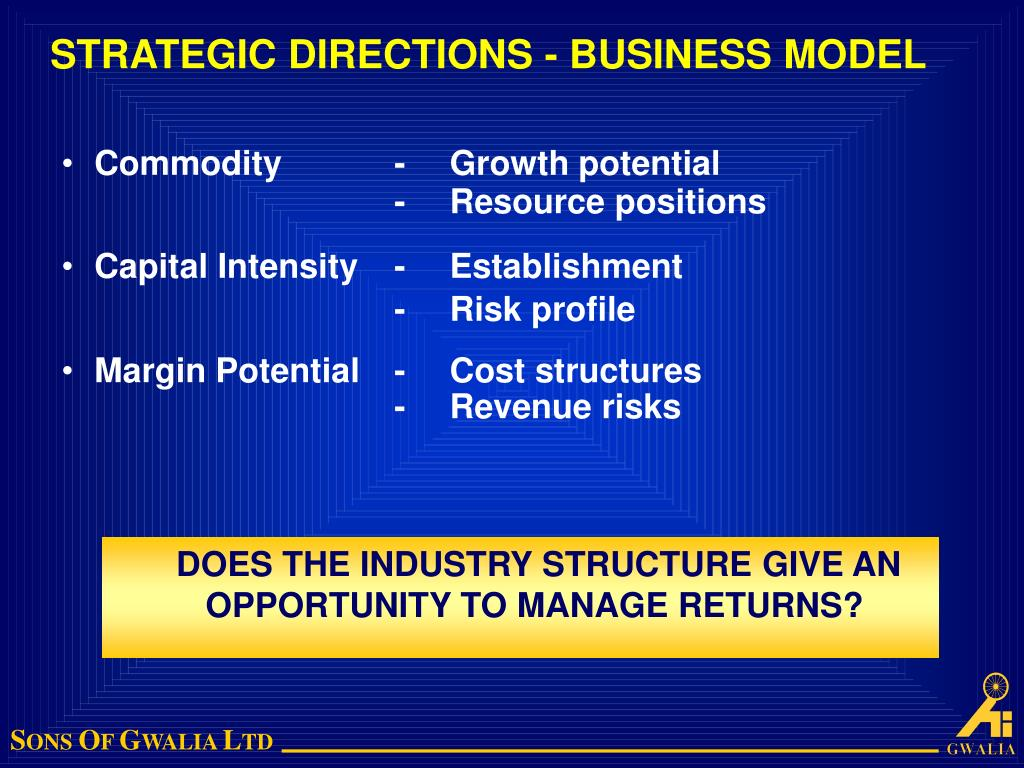 STRATEGIC DIRECTIONS - BUSINESS MODEL