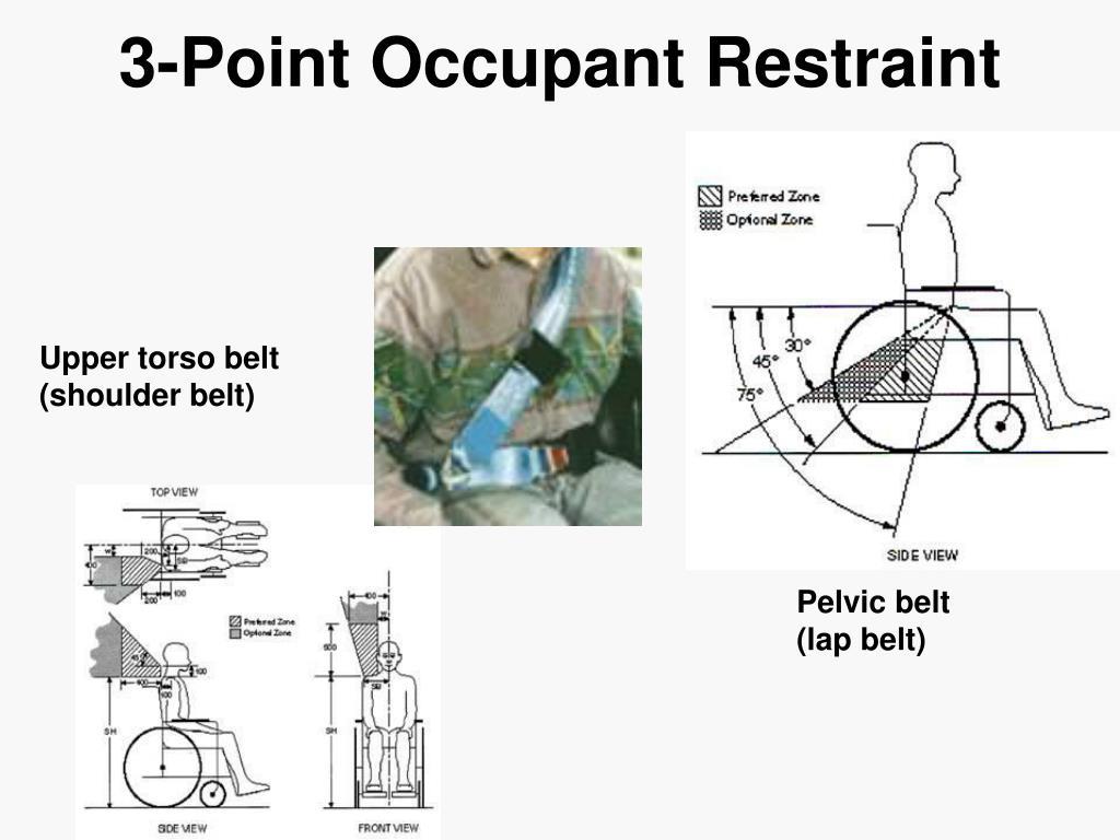 3-Point Occupant Restraint