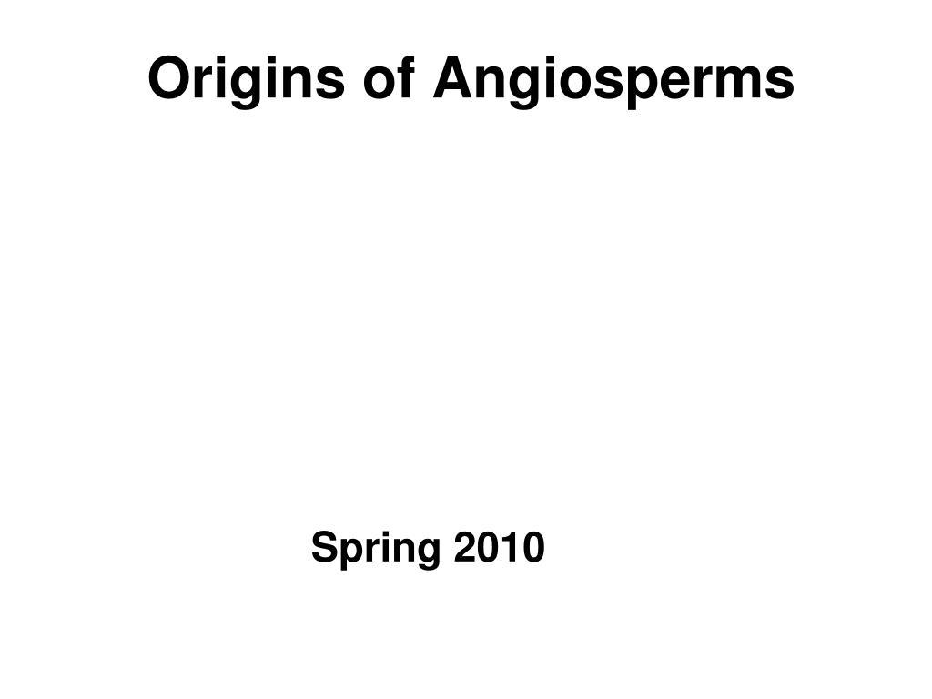 origins of angiosperms l.