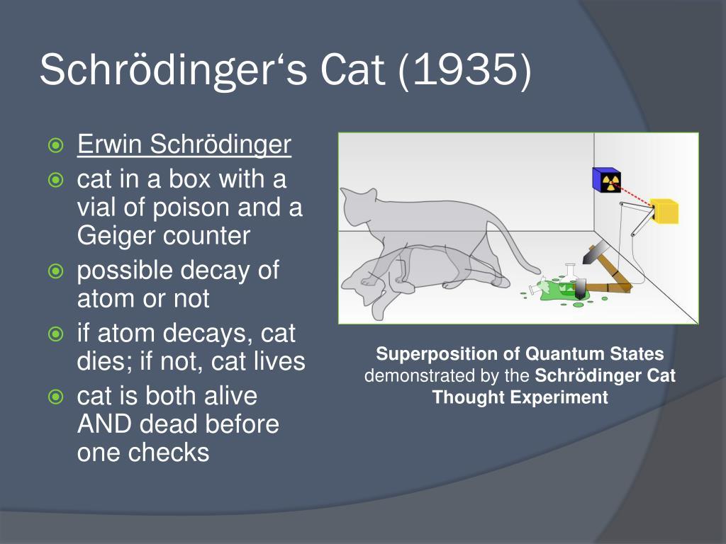 Schrödinger's Cat (1935)