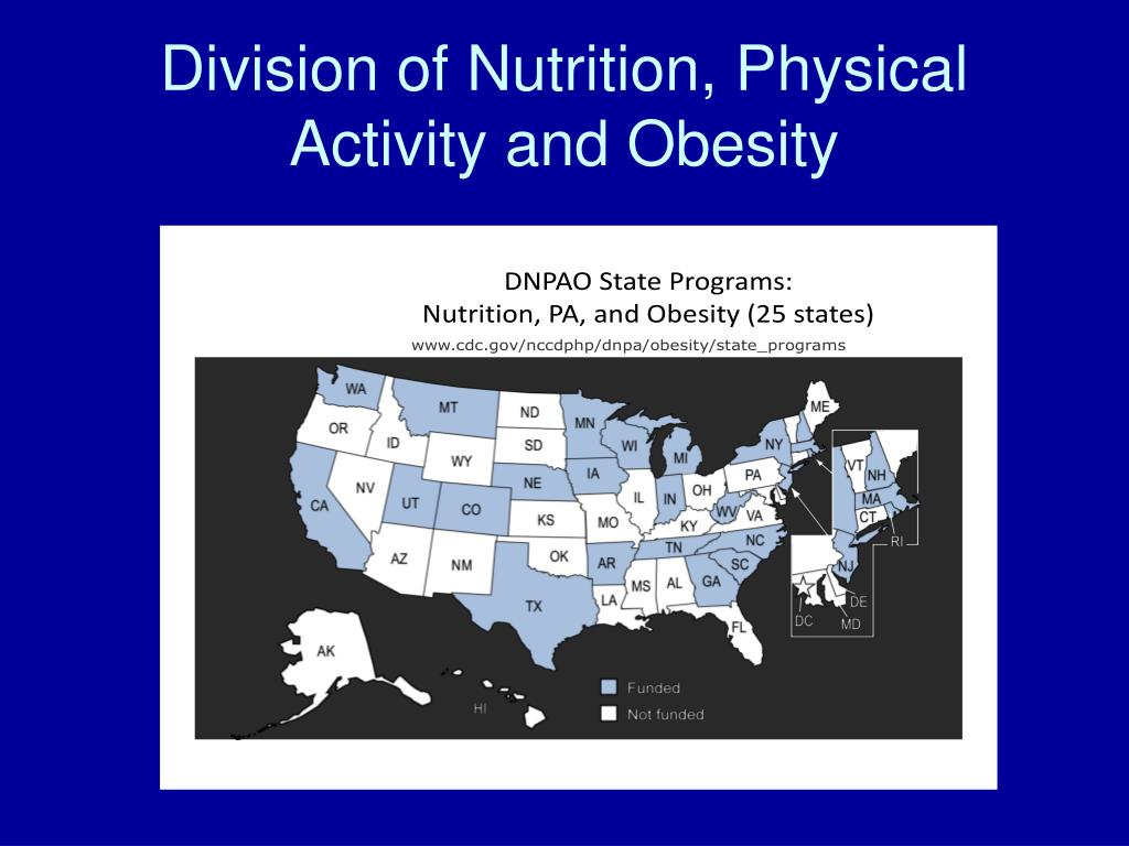 Best 28 nutrition physical activity and obesity unhealthy life style choices the elephant - Div checker tool ...