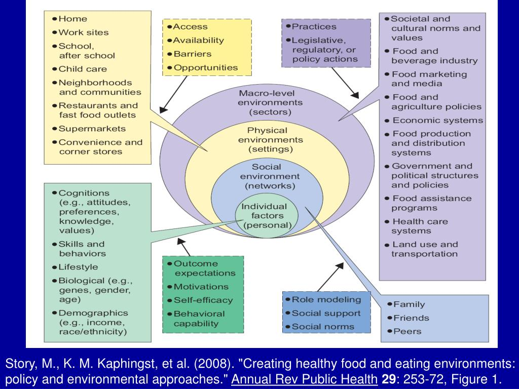 """Story, M., K. M. Kaphingst, et al. (2008). """"Creating healthy food and eating environments: policy and environmental approaches."""""""