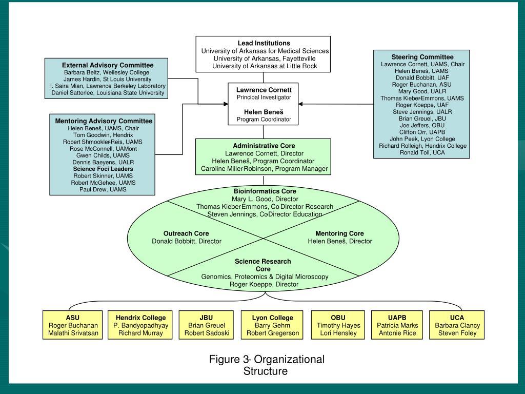 Lead Institutions