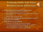 program audio and voice reinforcement subsystem