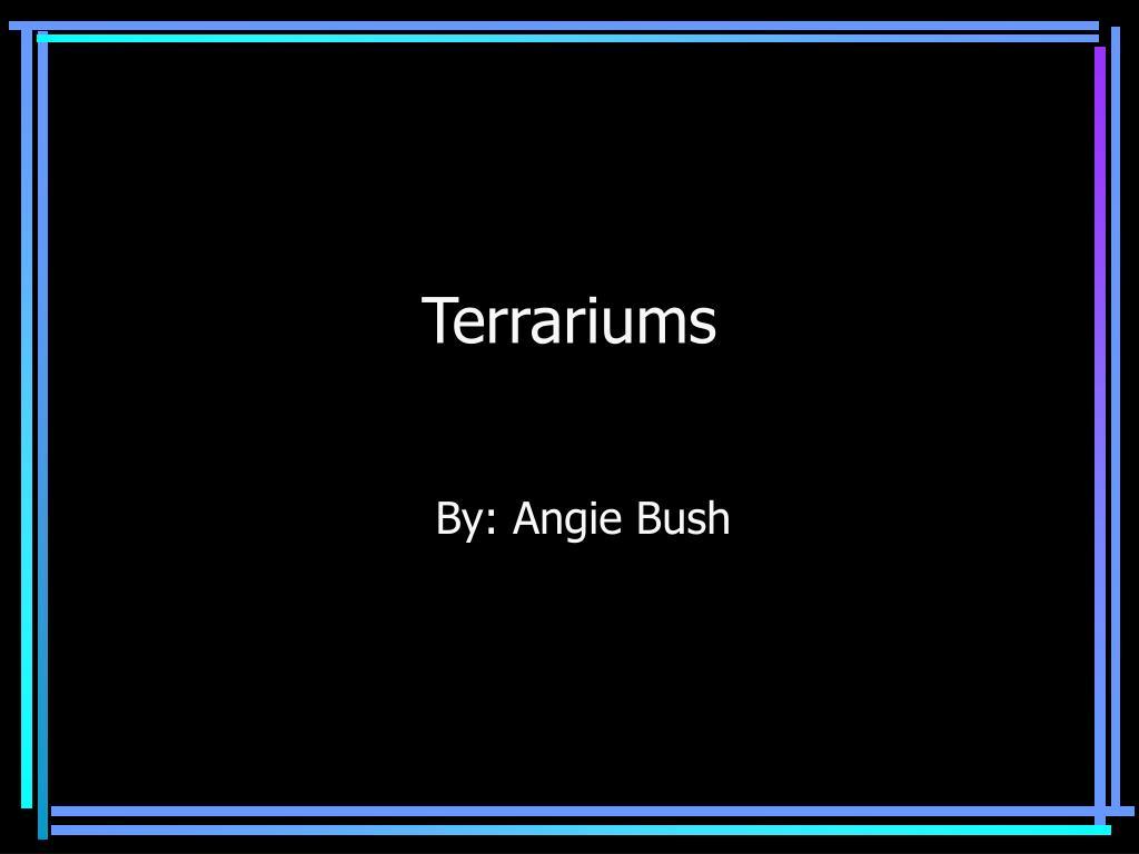 terrariums l.