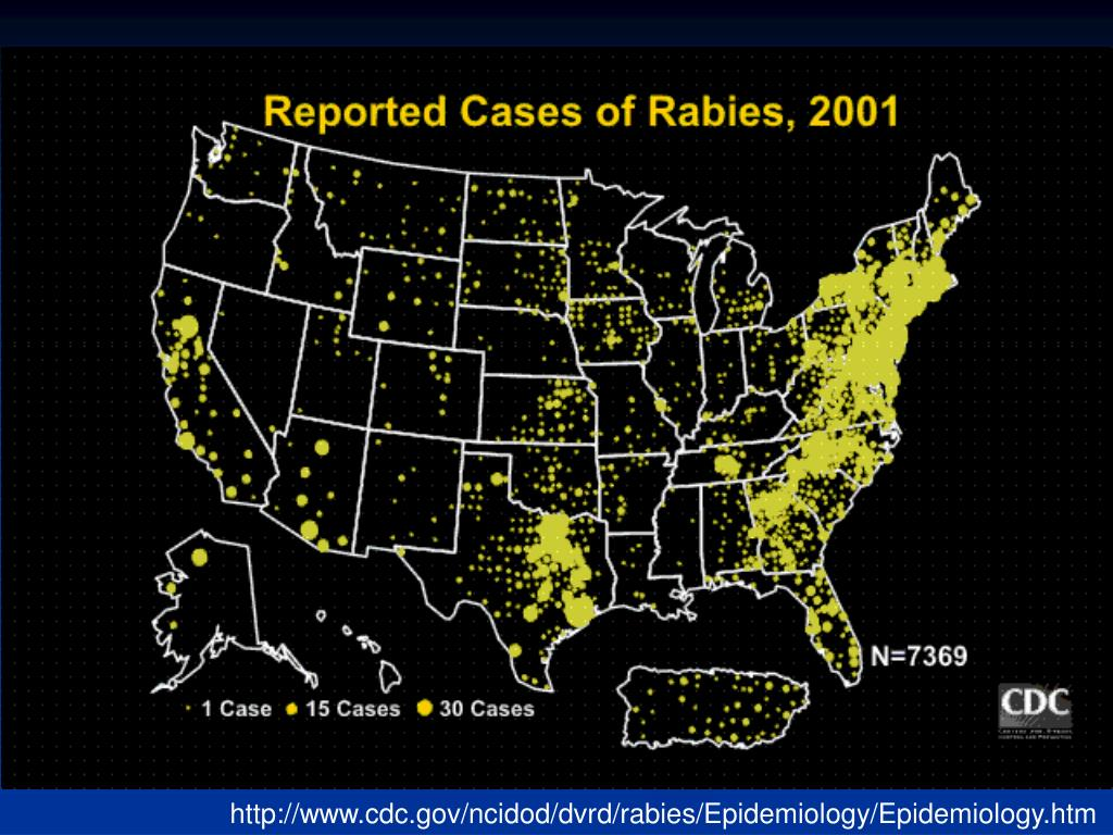 http://www.cdc.gov/ncidod/dvrd/rabies/Epidemiology/Epidemiology.htm