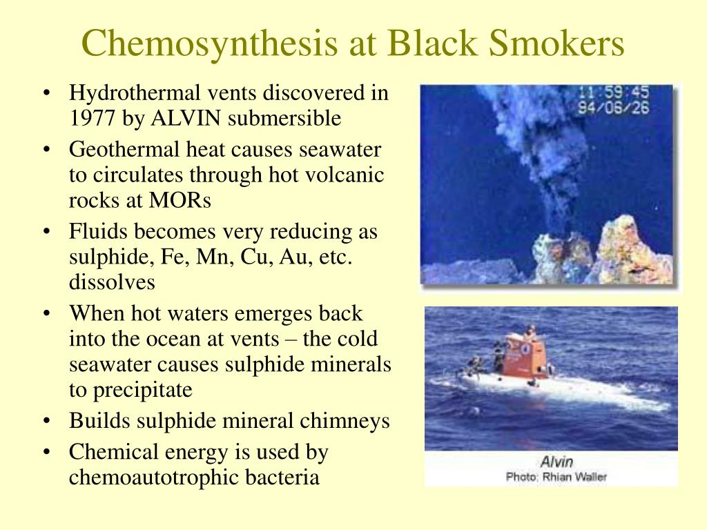 Chemosynthesis at Black Smokers