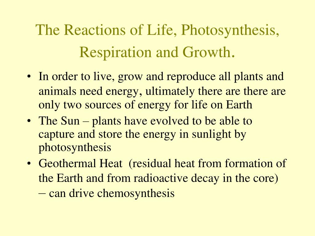 The Reactions of Life, Photosynthesis, Respiration and Growth