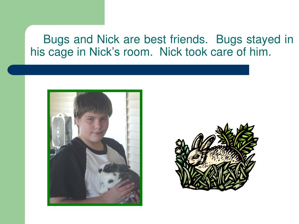 Bugs and Nick are best friends.  Bugs stayed in his cage in Nick's room.  Nick took care of him.