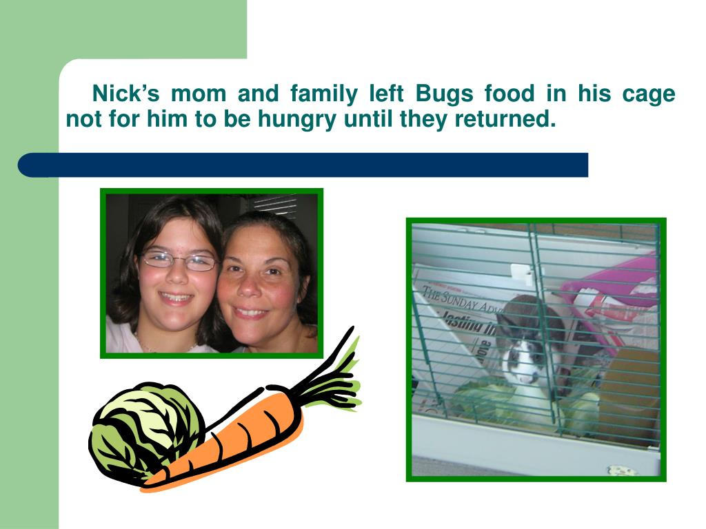 Nick's mom and family left Bugs food in his cage not for him to be hungry until they returned.