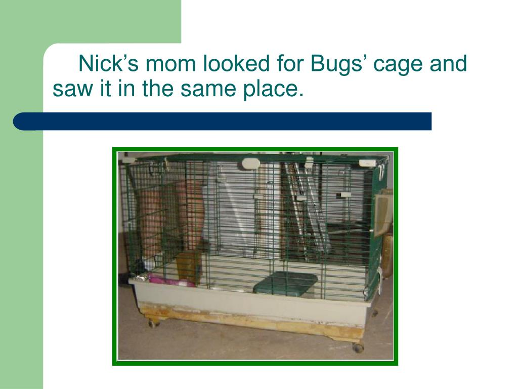 Nick's mom looked for Bugs' cage and saw it in the same place.