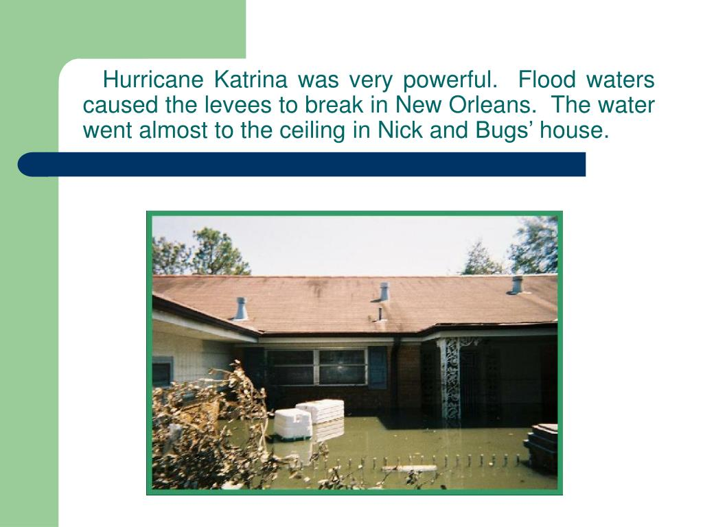 Hurricane Katrina was very powerful.  Flood waters caused the levees to break in New Orleans.  The water went almost to the ceiling in Nick and Bugs' house.