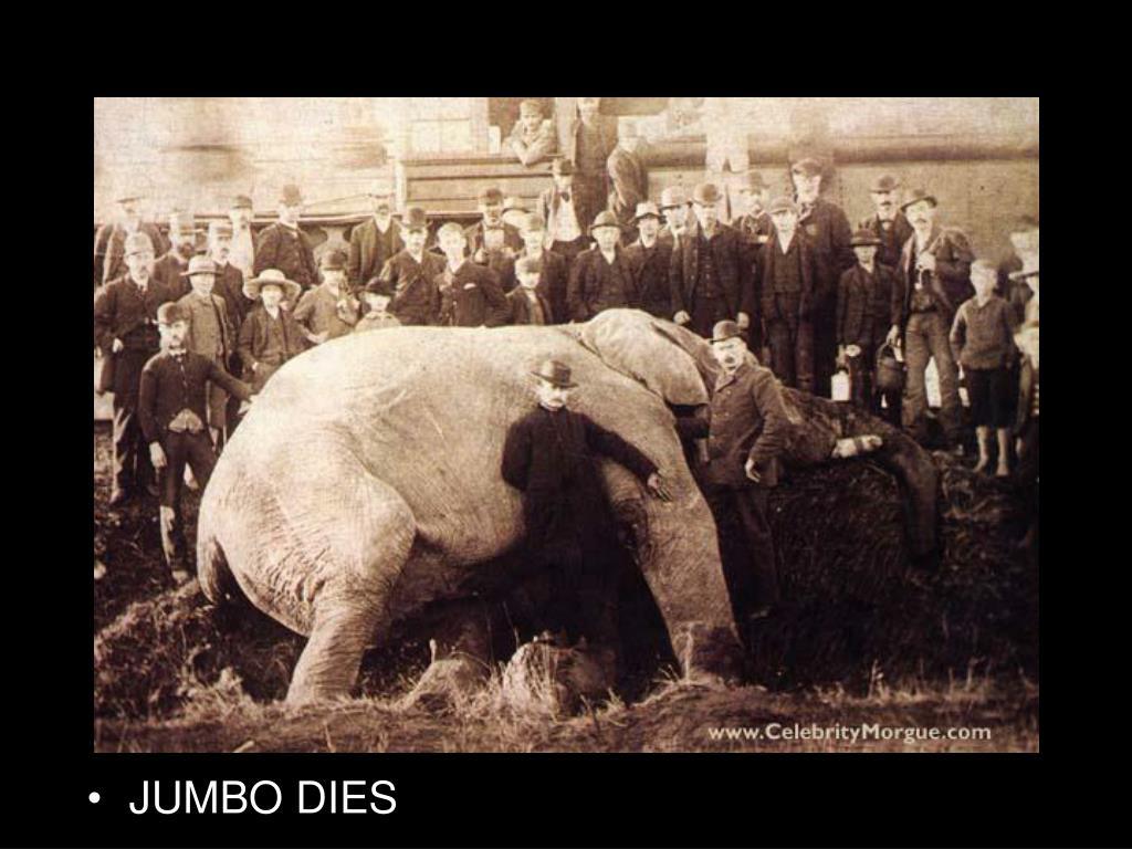 JUMBO DIES