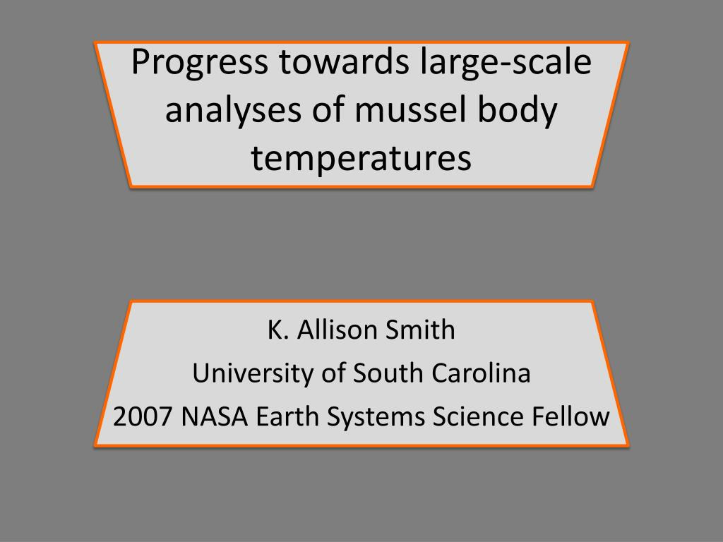 progress towards large scale analyses of mussel body temperatures