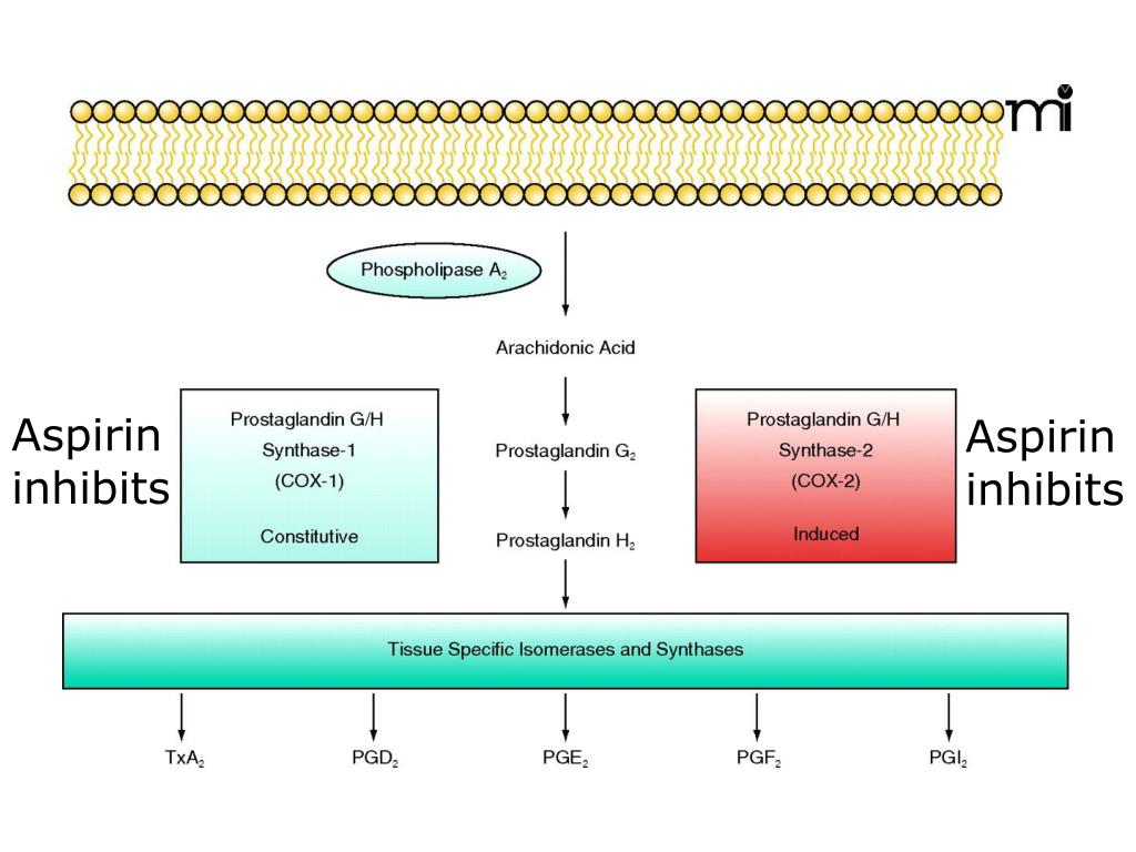 Aspirin inhibits
