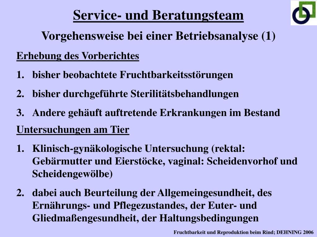 Service- und Beratungsteam