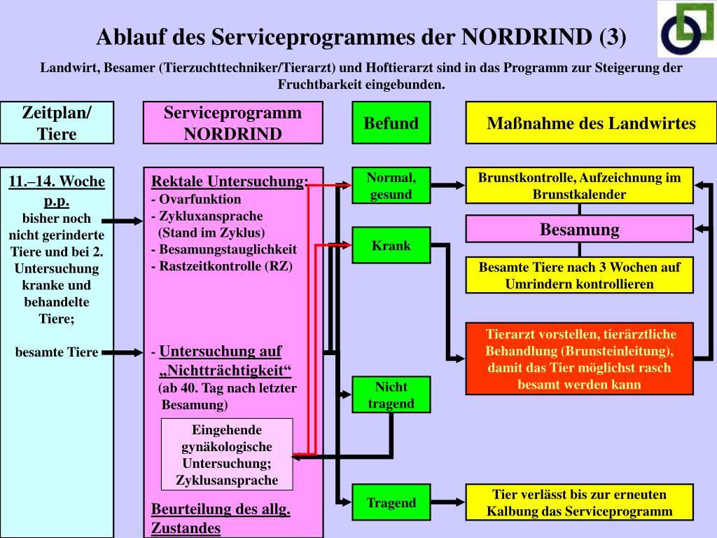 Ablauf des Serviceprogrammes der NORDRIND (3)