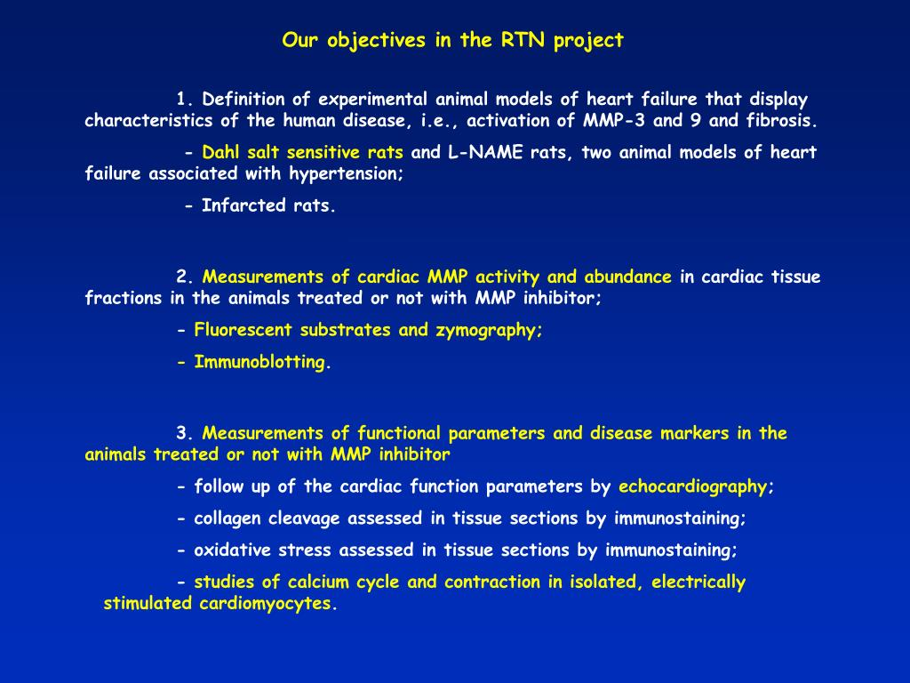 Our objectives in the RTN project