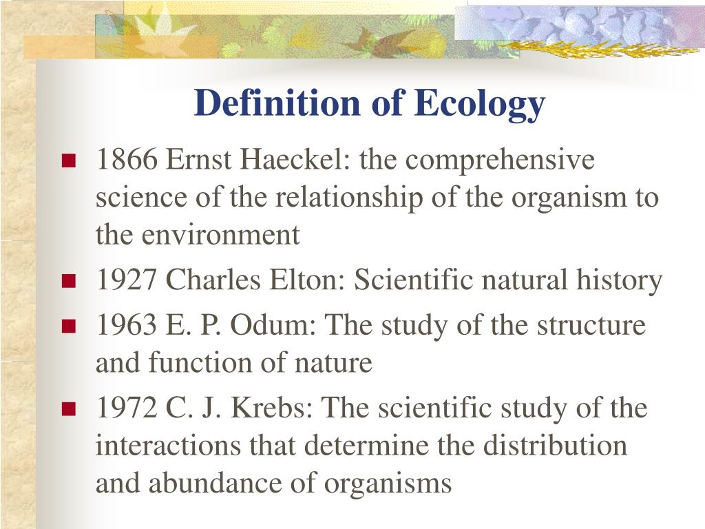 definition of ecology l.