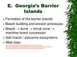 e georgia s barrier islands