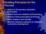 guiding principles for the process
