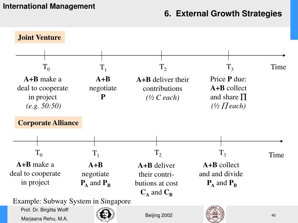 6.  External Growth Strategies
