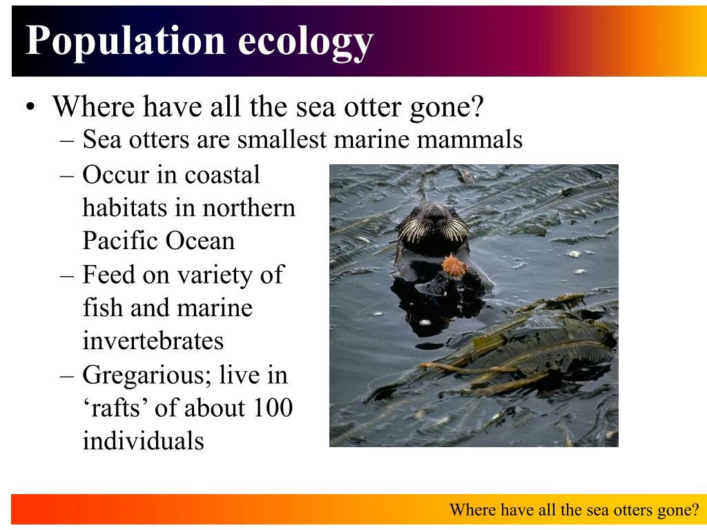 population ecology l.
