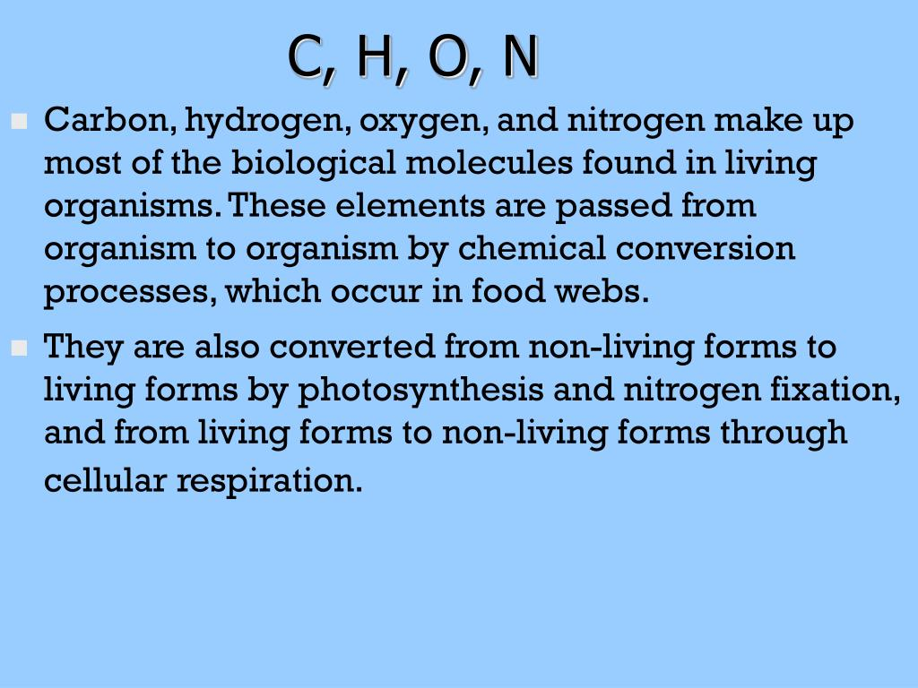 C, H, O, N