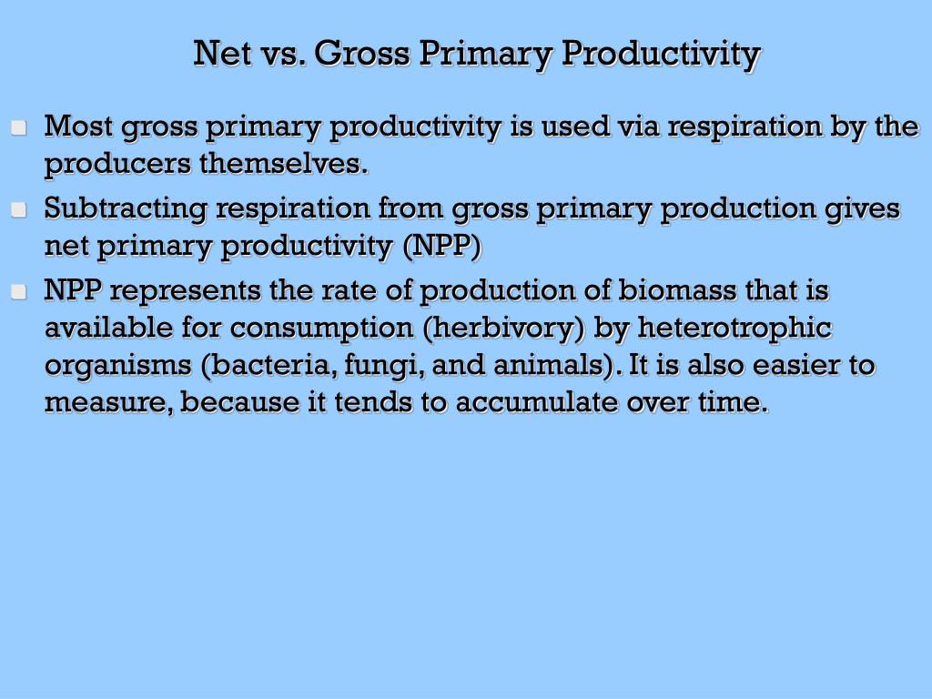 Net vs. Gross Primary Productivity