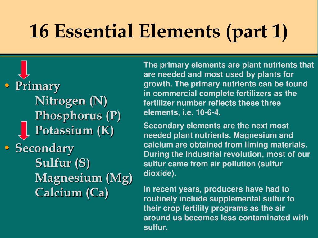 16 Essential Elements (part 1)