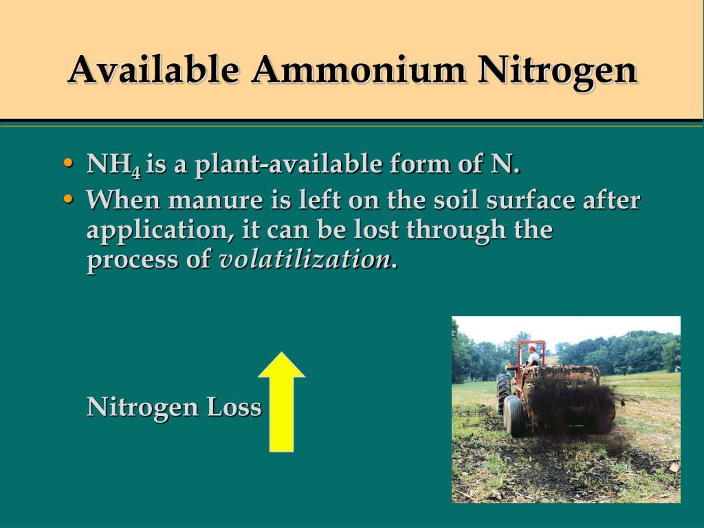 Available Ammonium Nitrogen