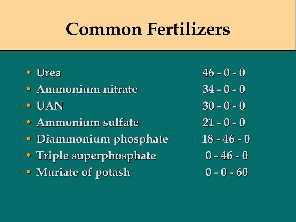 Common Fertilizers