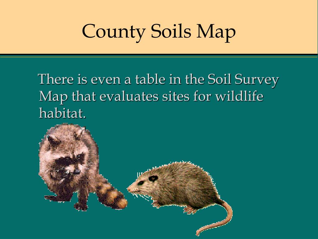 County Soils Map