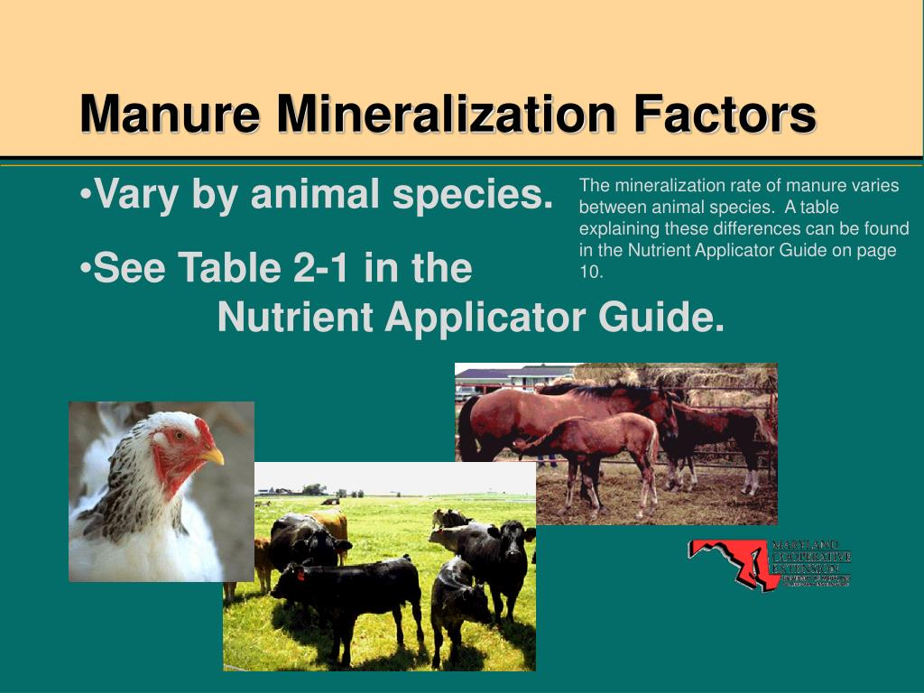 Manure Mineralization Factors